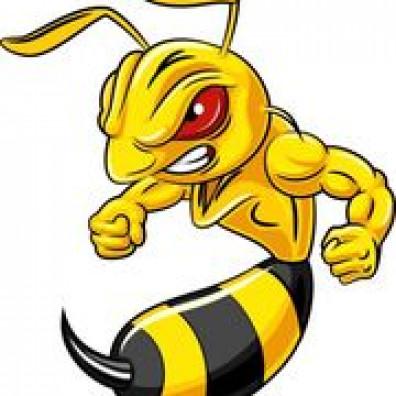 400 Killa-Wasps